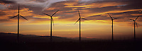 Wind Farm after Sunset
