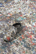 close up of floor with a shoe and paint in an artist studio