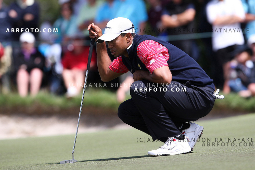 20 November 2011 : Tiger Woods crouches to look at the green  during the fifth-round Sunday Final round single ball matches at the Presidents Cup at the Royal Melbourne Golf Club in Melbourne, Australia. .