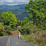 View of the road to Punta Islita, in the province of Guanacaste, Costa Rica. Photo: Tito Herrera for The New York Times.