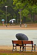 umbrella in park Kyoto Japan