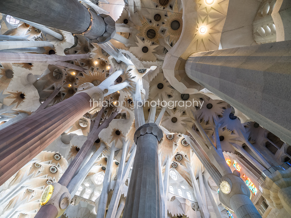 Looking up at the ceiling of La Sagrada Familia, Gaudi's unfinished masterpiece, Barcelona, Spain.