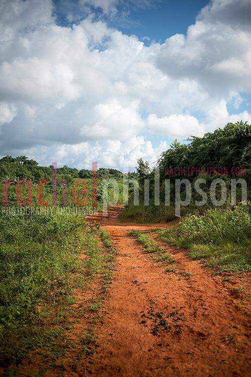 Cuba, Viñales, landscape, mountain path