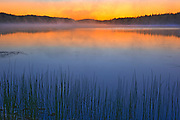 Fog over Lac Sauvage at dawn<br />