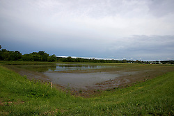 31 May 2013:  Mackinaw River flooding in spring or 2013 near Delavan Illinois spills over into field normally planted with grain.   Scenery and flooding in Tazwell and Mason Counties in Illinois