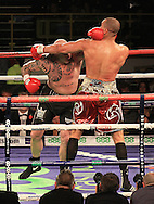 Picture by Richard Gould/Focus Images Ltd +44 7855 403186<br /> 02/11/2013<br /> Richard Towers (red & Gold) and Lucas Browne (black) at Hull Ice Arena, Hull.