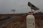 A dead tree and radiation meter inside the Fukushima exclusion zone, Namie, Fukushima, Japan. Wednesday March 9th 2016. The Great East Japan Earthquake on March 11th 2011 was followed by a massive tsunami that levelled much of the Tohoku coast in north east Japan, killing around 18,000 people and causing meltdowns and explosions at the Fukushima Daiichi nuclear power station leading to the contamination and evacuation of a 20 kilometre exclusion zone around the plant.