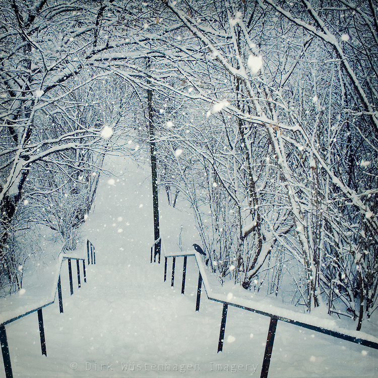 Snow covered stairs during a snow storm<br /> <br /> Prints &amp; more: http://society6.com/DirkWuestenhagenImagery/snow-slide_Print