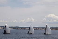 PALMAVELA 2013