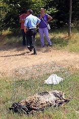 20120730 CANE TROVATO MORTO VICINO AL CANILE MUNICIPALE