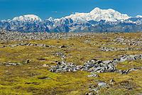 Alaska Range from Kesugi Ridge, Denali State Park Alaska