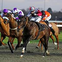 Kempton 12th January