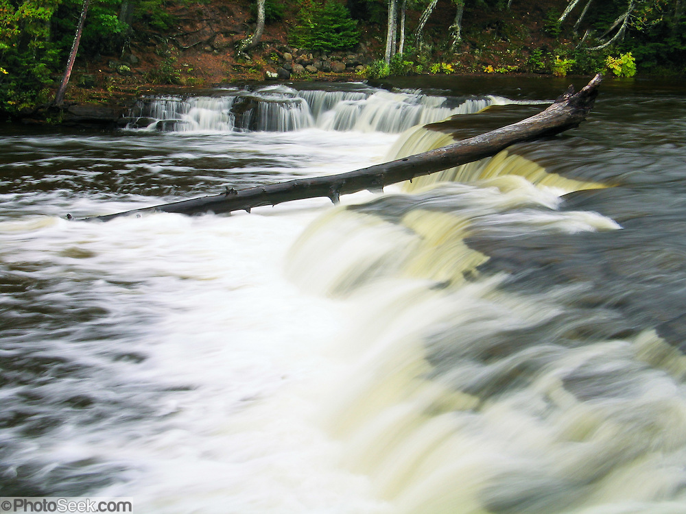 Lower Falls in Tahquamenon Falls State Park, Michigan, USA. Tannins color the water amber and brownish green, leached from Cedar, Spruce and Hemlock trees in swamps drained by the river. The Tahquamenon rises from springs north of McMillan and meanders 94 miles before emptying into Whitefish Bay. Soft water churned by the the falls creates much foam. Tahquamenon Falls is an easy drive along Highway M-123, which offers a loop from Highway M-28 through Paradise, past Tahquamenon Falls State Park, through Newberry and back to M-28.