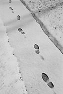 A solitary set of footprints breaks the freshly fallen snow on this sidewalk in Adel, Iowa.