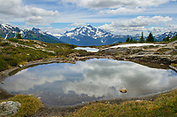 Mount Shuksan seen from Yellow Aster Butte Basin. Mount Baker Wilderness, North Cascades Washington