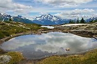 Mount Shuksan seen from Yellow Aster Butte Basin. Mount Baker Wilderness, North Cascades Washington