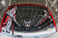 KELOWNA, BC - NOVEMBER 30: Taylor Gauthier #35 of the Prince George Cougars stands in the crease during a time out against the Kelowna Rockets at Prospera Place on November 30, 2019 in Kelowna, Canada. (Photo by Marissa Baecker/Shoot the Breeze)