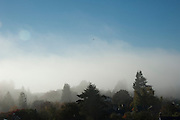 Fog in the Broadview neighborhood above Puget Sound.