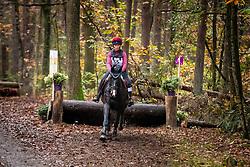 De Keersmaecker Jolien, BEL, Morumbi CD<br /> Eventing LRV Zutendaal 2019<br /> © Hippo Foto - Dirk Caremans<br /> 03/11/2019