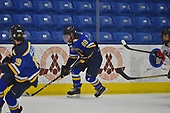 Game 3 - St Louis Blues Vs CCYHA