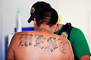 21 SEPTEMBER 2010 - PHOENIX, AZ: Tattoos on a man Phoenix police arrested on a felony warrant. Crime has steadily dropped in Phoenix over the past few years, in line with national trends. The latest number released this month showed Phoenix reported fewer 2010 homicides, rapes, robberies, thefts - in addition to other major crimes -- compared with the same time period the previous year. Detectives in the Phoenix police department's Major Offender Unit make several arrests every day.   PHOTO BY JACK KURTZ