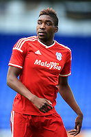 Sammy Ameobi, Cardiff City