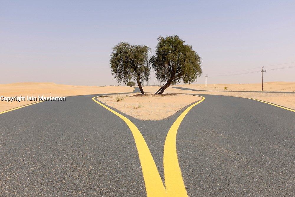 New desert cycle track at Al Qudra in Dubai United Arab Emirates
