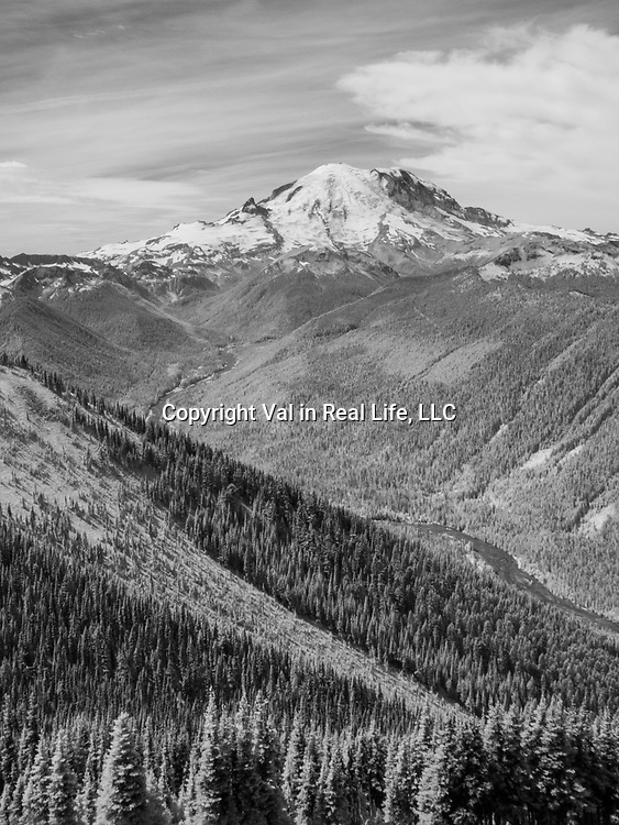 Mount Rainier in black and white