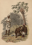 Indian barbers from different areas. On left the Telinga barber is sharpening his razor, while on right the Malabar barber is shaving a client's head. Hand-coloured engraving published Rudolph Ackermann, London, 1822.  Hair. Personal Hygiene.