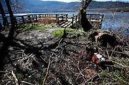 Monticchio Laghi (PZ) 12.03.2011 - Il degrado dei laghi di Monticchio (PZ). La banchina panoramica sul lago grande con rifiuti di ogni genere.