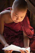 Novice monk reading Buddhist teachings, Mandalay, Burma