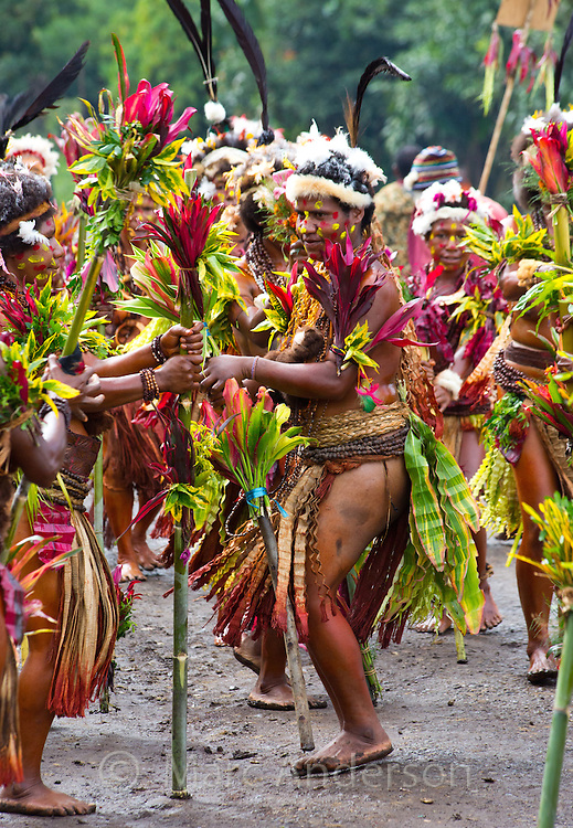 Women from the Selehoto Alunumuno tribal group in traditional dress and dancing in a small village in the Papua New Guinea highlands.