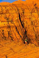 Female hiker, Snow Canyon State Park, near St. George, Utah USA