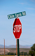 U.S.A., New Mexico. Chile fields near Garfield. Chile Farm Road.