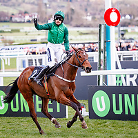 Footpad (R.Walsh) wins The Racing Post Arkle Challenge Trophy Novices' Steeple Chase Gr.1 in Cheltenham, 13/03/2018, photo: Zuzanna Lupa