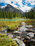 Low-angle view of beautiful, remote Lake O'Hara and Yukness Mountain in the background, in Yoho National Park, near Field, British Columbia, Canada