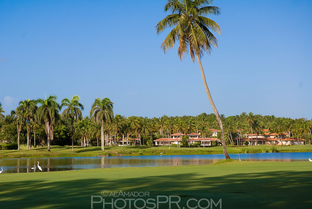 Views around the golf course; lagoon with villas