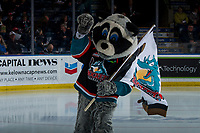 KELOWNA, CANADA - FEBRUARY 23: Rocky Raccoon, the mascot of the Kelowna Rockets stands at center ice at the start of the game against the Kamloops Blazers  on February 23, 2019 at Prospera Place in Kelowna, British Columbia, Canada.  (Photo by Marissa Baecker/Shoot the Breeze)