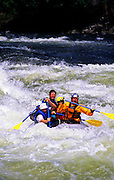 Rafting the wild and scenic Lochsa River during high spring runoff. Lowell, Idaho.