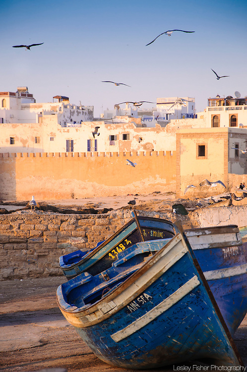 Fishing Port, Essaouira, Morocco, North Africa, Africa