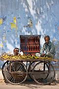 Banana seller and cart at Agra, India