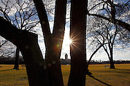 TREVOR HAGAN - The warm afternoon sun peaks through trees in Assiniboine Park. <br /> November 12, 2010