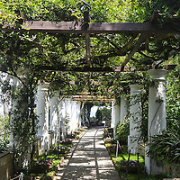 Gardens at Villa San Michele, located on Isle of Capri, just off the Amalfi Coast of Italy