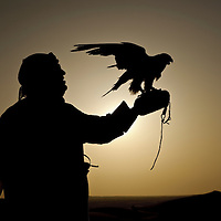 Al-Ain (Abu Dhabi), United Arab Emirates 04 April 2009<br />