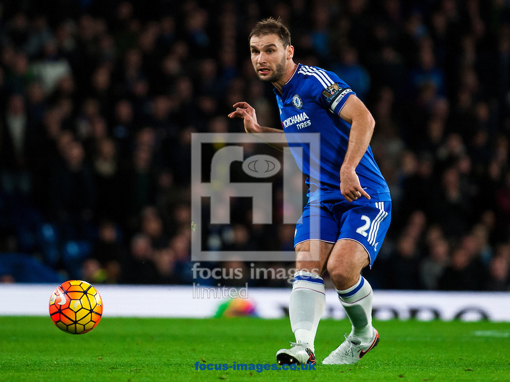 Branislav Ivanovic of Chelsea  during the Barclays Premier League match at Stamford Bridge, London<br /> Picture by Jack Megaw/Focus Images Ltd +44 7481 764811<br /> 05/12/2015