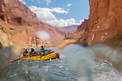 United States, Arizona, Grand Canyon National Park, whitewater raft in rapids on Colorado River.