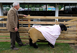 © Licensed to London News Pictures.14/07/15<br /> Harrogate, UK. <br /> <br /> A man stands with his sheep on the opening day of the Great Yorkshire Show.  <br /> <br /> England's premier agricultural show opened it's gates today for the start of three days of showcasing the best in British farming and the countryside.<br /> <br /> The event, which attracts over 130,000 visitors each year displays the cream of the country's livestock and offers numerous displays and events giving the chance for visitors to see many different countryside activities.<br /> <br /> Photo credit : Ian Forsyth/LNP