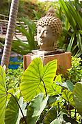 Statue, Hyatt Maui<br />