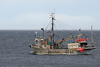 Herring Fishing Boat, , Gabriola Island , British Columbia, Canada