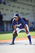 LOS ANGELES, CA - AUGUST 20:  Don Mattingly #8 of the Los Angeles Dodgers plays the field during batting practice before the game against the San Diego Padres at Dodger Stadium on Wednesday, August 20, 2014 in Los Angeles, California. The Padres won the game 4-1. (Photo by Paul Spinelli/MLB Photos via Getty Images) *** Local Caption *** Don Mattingly